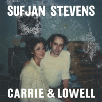Sufjan Stevens Blue Bucket Of Gold Artwork