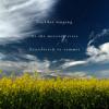 Lee Rosevere - Cicadas Singing... [Naviarhaiku 062 - Cicadas singing]