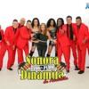 LA ROBA MARIDOS (Remix 105Bpm) - La Sonora 100% Puro Dinamita De Anaidita - CarlosMarc FREE Portada del disco