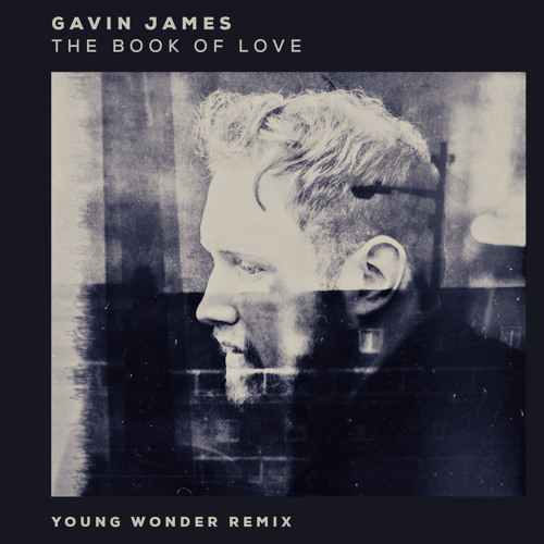 Gavin James // The Book Of Love (Young Wonder remix)