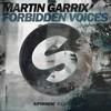 Martin Garrix - Forbidden Voices (SINEDROME Deep Edit)