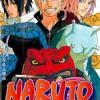 Naruto Road to Ninja Theme/s