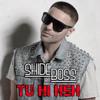 Shide Boss - Tu Hi Heh (Remix)