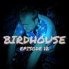 Birdhouse Episode 12