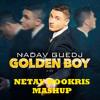 Nadav Guedj - Golden Boy (netay Bookris Mashup) [FREE DL]