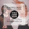 BUZZZMIX VOL. 13 - Space Jump Salute
