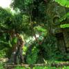 4 - Jungle Giant