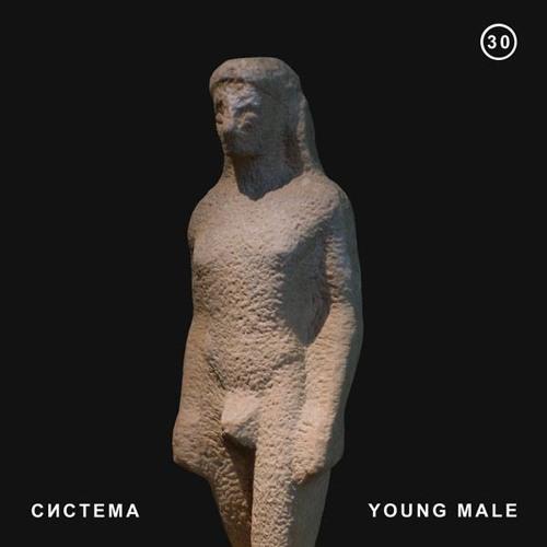система # 30 | YOUNG MALE