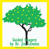 Guided Imagery by Dr. Lemons (with no background music)