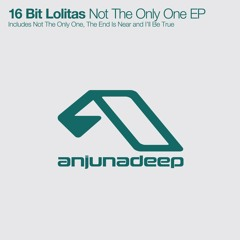 Not The Only One (Original Mix)