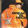 Busta Rhymes - Break Ya Neck (Fragment Remix)