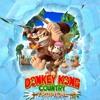 60- Donkey Kong Country Theme