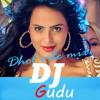 (Hey Bro)dj DJ Gudu (2)