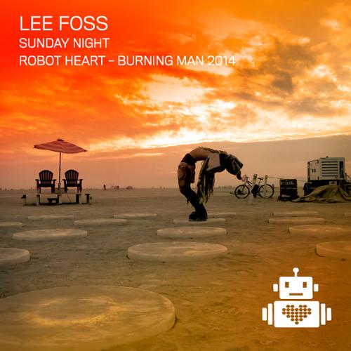Lee Foss - Robot Heart - Burning Man 2014