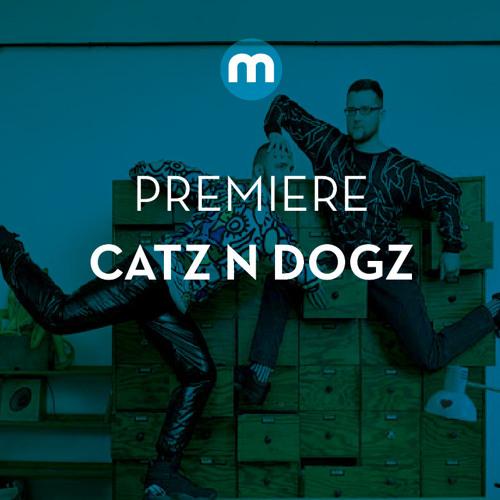Premiere: Catz N Dogz vs Peter, Bjorn & John 'From Your Heart'