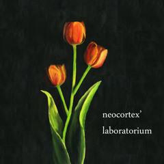 Neocortex' Laboratorium live @ BrugesInsideOut