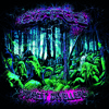 Lunecell - Forest Totem (Diffus Remix) (Insonitus Records)