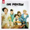 One Direction - Up All Night (cover) ft Riri