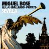 Miguel Bose - Sevilla (Juan Gallardo Private 2015)