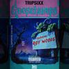GOOSEBUMPS - TripSixx ft Dillan Ponders x Roy Wood$ x $ha (Prod. DZY)