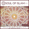 Download S02E03: Healing The Heart And Soul With Dr. Ibrahim Jaffe Mp3