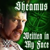 WWE Sheamus Written In The Face Theme Song