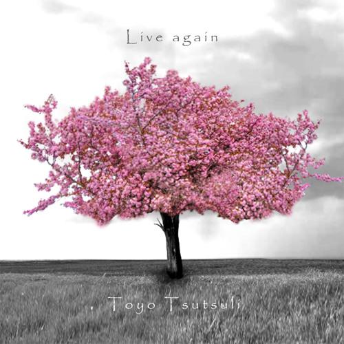 Toyo Tsutsuli - Live again