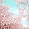 Yuria - Hana Wa Sakura Kimi Wa Utsukushii / 花は桜君は美しい(Ikimono gakari いきものがかり) Cover 歌ってみた