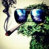 Protoje & Wiz Kahlifa - This Is Not A Marijuana Song (yaadcore California Remix)