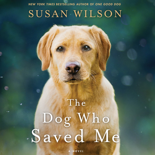 The Dog Who Saved Me by Susan Wilson audiobook excerpt