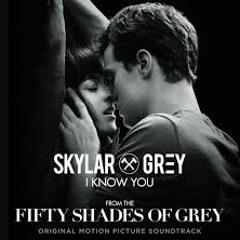 I Know You - Skylar grey (Cover por Carmen Paz)