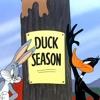 Looney Tunes Riddim