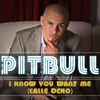 Pitbull - I Know You Want Me 2015 (Jakrente Remix)FREE DOWNLOAD