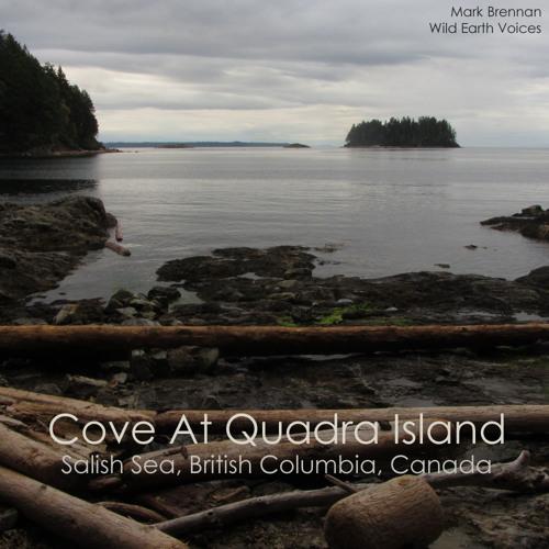 Quadra Island Cove, Salish Sea British Columbia