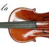 Flight Of The Bumblebee Violin by Akoska Pratama