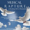 Frederic Delarue - MUSICAL RAPTURE, A Healing Gift to Humanity