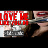 50 Shades of Grey - Love Me Like You Do - Ellie Goulding - Flute Cover Instrumental (Free download)