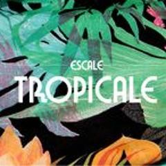 Nicolas Jaar. RMX - L 'Escale Tropicale -- Sweet Tropico -- Free For All