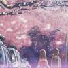 Sakura - Ikimono gakari (cover)