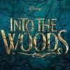 Agony (from Into The Woods) - Paul & Danny