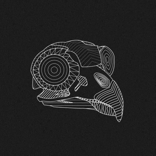"Birds of Night - ""Asleep in the Pine"""