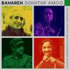 Mohsen Namjoo - Bahareh Dokhtar Amoo mp3