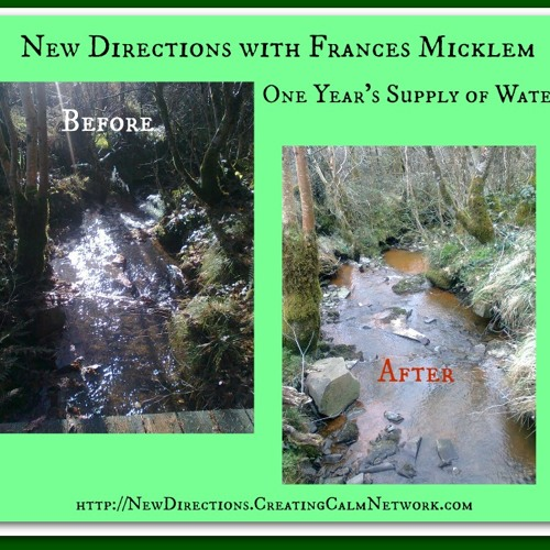 New Directions with Frances Micklem - One Year's Supply of Water