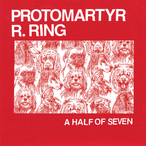 "Protomartyr - ""Blues Festival"""