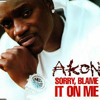 Akon - Sorry Blame It On Me (Queiler Blend)