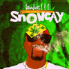 Bahe Mixage_Snow Cay mp3