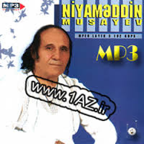 Niyameddin Musayev By Hadi Bagheri