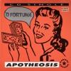 Apotheosis - O Fortuna (Live Remix)