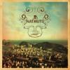 Natiruts reggae power/esperar (Bonus Track)