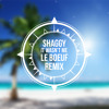 Shaggy - It Wasnt Me (Le Boeuf Remix)